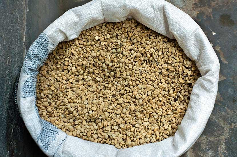 L'acide chlorogénique est présent dans le café vert non torréfié