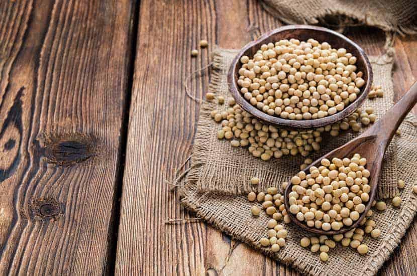 La prise de suppléments de protéines de soja peut contribuer à la perte de poids