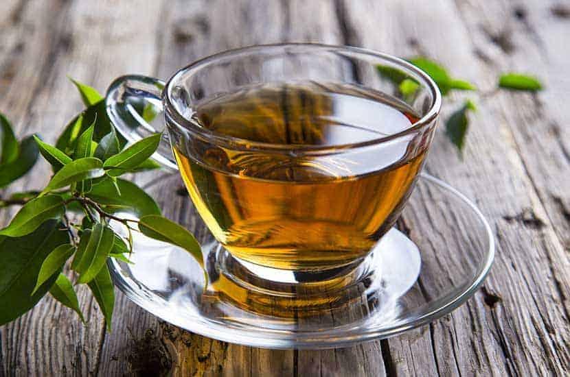 Le thé vert est riche en antioxydants et en substances susceptibles de brûler les graisses