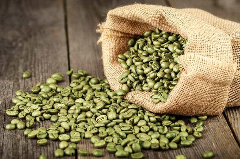 L'extrait de café vert est riche en acide chlorogénique et en caféine