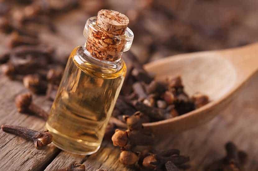 L'huile de girofle a des propriétés antimicrobiennes et analgésiques