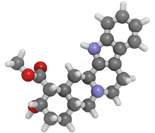 La yohimbine contient des molécules aphrodisiaques