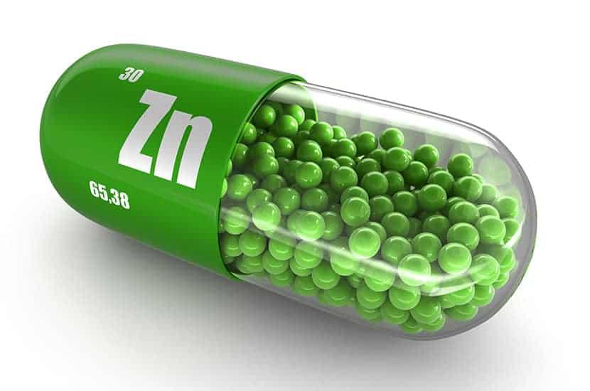 Le zinc est aussi un brûleur de graisse potentiel